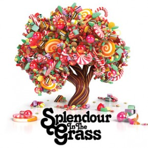 2011 Splendour In The Grass Line Up