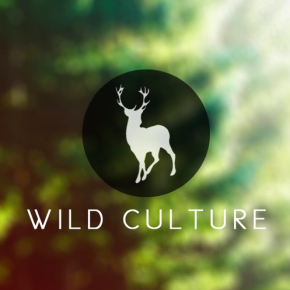 Japanese Wallpaper - Breathe In (ft. Wafia) (Wild Culture More Bass Remix)