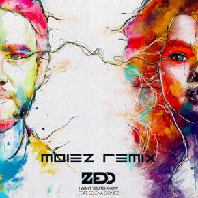 Zedd Ft. Selena Gomez - I Want You To Know (Moiez Remix)