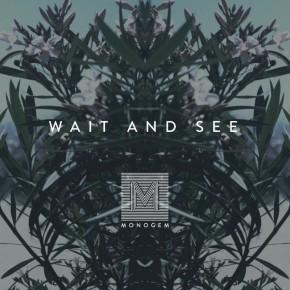 Monogem - Wait And See (Big Z Remix)