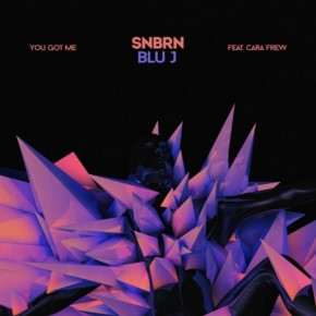 SNBRN & BLU J - You Got Me feat. Cara Frew